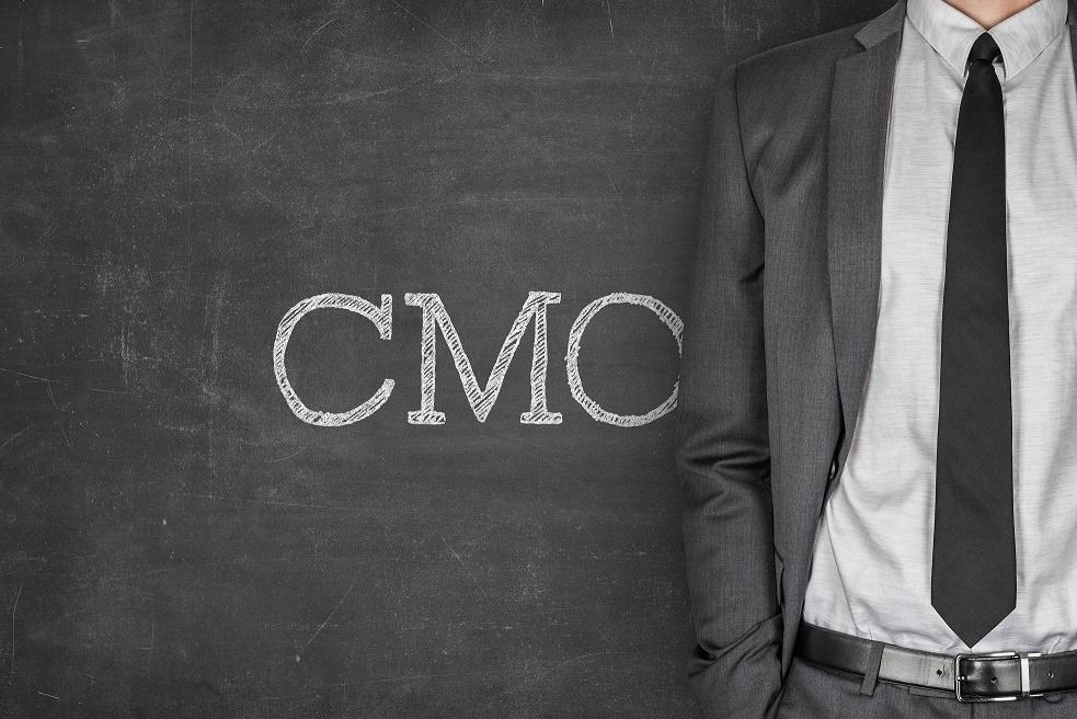 Etude Directeur Marketing CMO